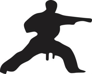 karate-312471_640